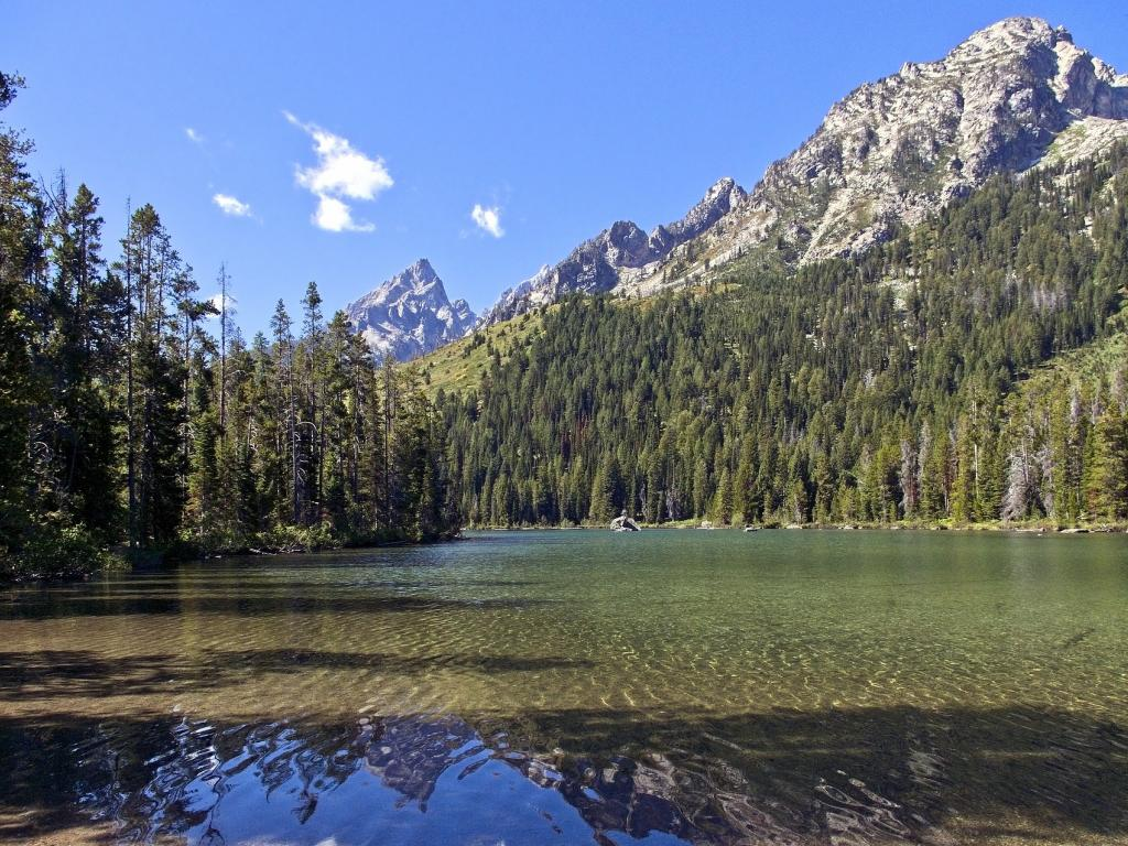 3 Reasons to Visit Jackson Hole, WY in Spring