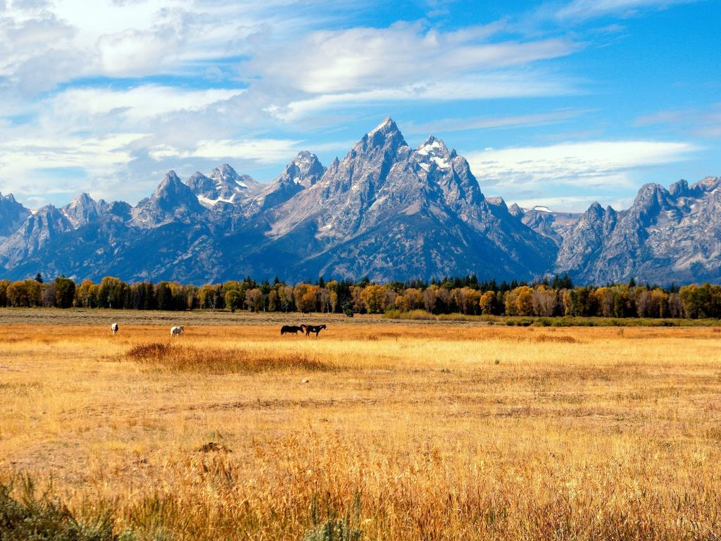 Plan Your Labor Day Getaway In Jackson Hole