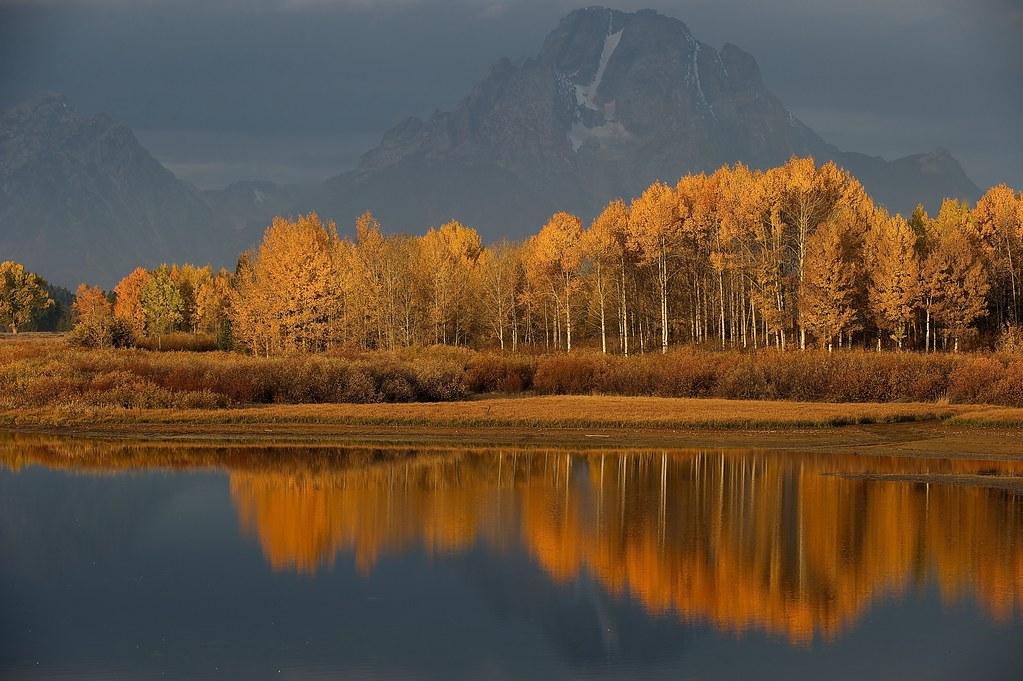 fall foilage and lake near Jackson Hole, WY